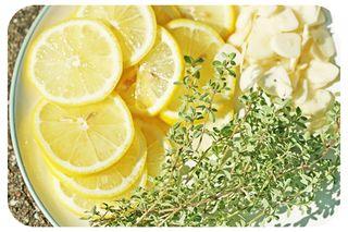 Lemonthyme1